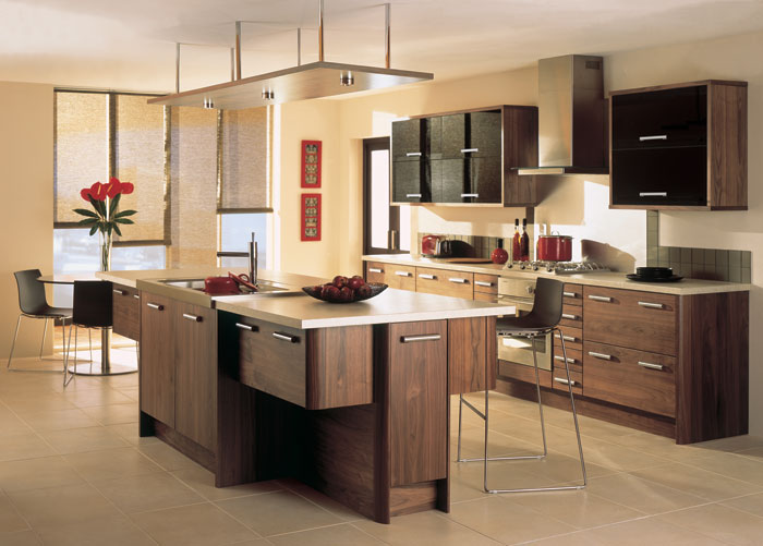 Modern kitchen designs becoming an established fashion for Kitchen models pictures