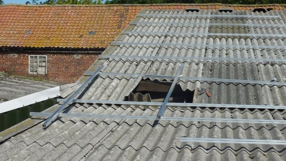 560x0_1368185680_pig-shed-roof