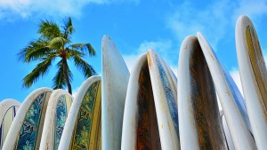 Surf board pic